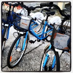 Thess Bike